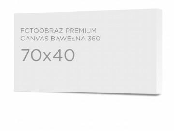 Fotoobraz premium 70x40 cm