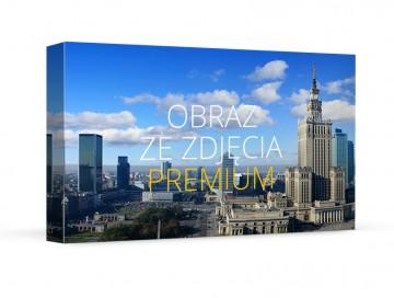 Fotoobraz premium 90x40 cm
