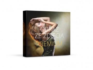Fotoobraz premium 40x40 cm
